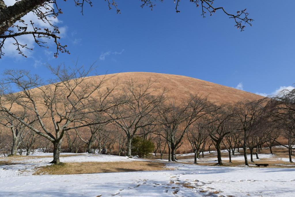 冬の大室山