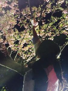 桜みーっけっ!